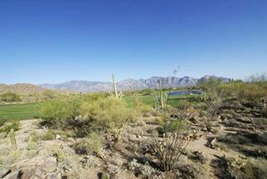 Stone Canyon area