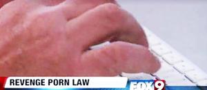 Cyber Law Attorney