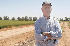 Dan Thelander, who grows alfalfa, wheat, cotton and other crops on 5,000 acres in Maricopa, is wary of a looming shortage on the Colorado River / Photo by Summer Pauli