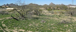 Future home of Irvington Commercial Center in Tucson. /Courtesy of City of Tucson.