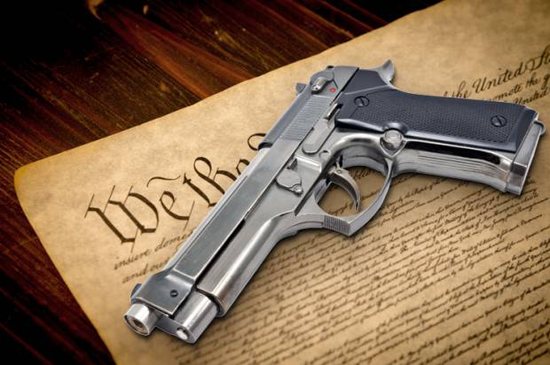 constitution_gun-620x412