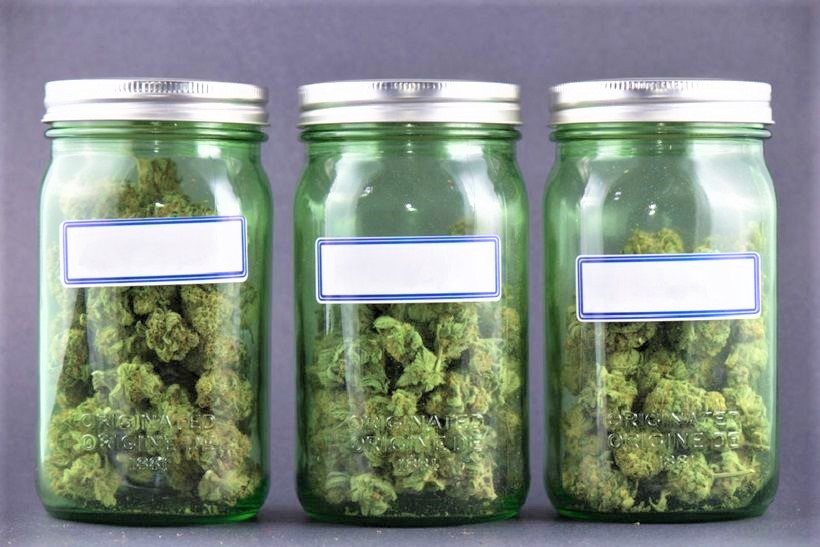 Lawyer up: dreaming of the Apple Store of cannabis? Don't
