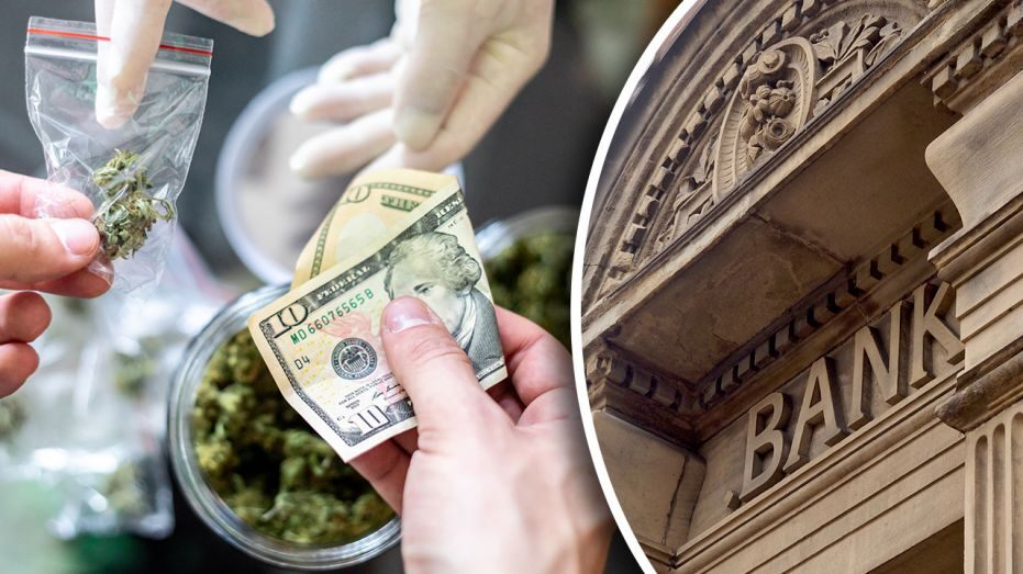 Congress might finally give the cannabis industry access to banks with comments from Adam Trenk, Rose Law Group partner, director of Cannabis and Hemp departments