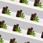 Jonathan Udell, Rose Law Group cannabis attorney, talks to Daily Star about Arizona marijuana dispensary market